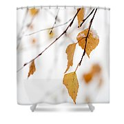 Snowing In Autumn Shower Curtain