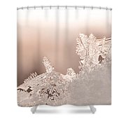 Snowland Shower Curtain