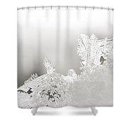 Snowland Bw Shower Curtain