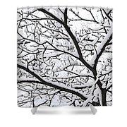 Snowy Branch Shower Curtain
