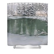 Snowy Day Shower Curtain