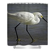 Snowy Egret By The Lagoon Shower Curtain
