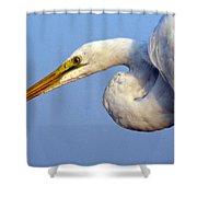 Snowy Egret Ready Shower Curtain