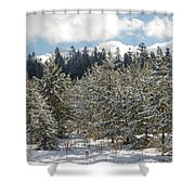 Snowy Forest Shower Curtain