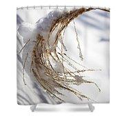 Snowy Fountain Grass Shower Curtain