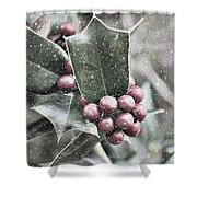Snowy Holly Christmas Card Shower Curtain