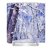 Snowy Path Shower Curtain by Rob Travis