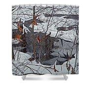 Snowy Pond Shower Curtain