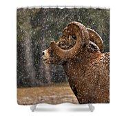 Snowy Ram Shower Curtain