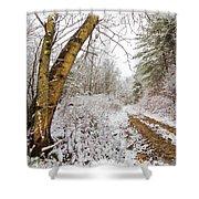 Snowy Watercolor Shower Curtain by Debra and Dave Vanderlaan