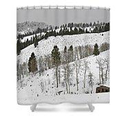 Snowy Wilderness Shower Curtain