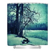 Snowy Woods By A Lake Shower Curtain