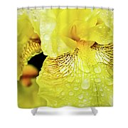 So Close To A Smile Shower Curtain