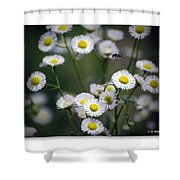 So Many Flowers So Little Time Shower Curtain