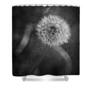 So Many Promises You Couldn't Keep Shower Curtain by Laurie Search