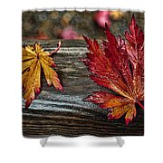 Soaked Leaves Shower Curtain