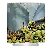 Soft And Sharp Shower Curtain