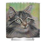Soft Kitty Shower Curtain