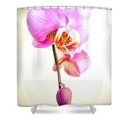 Soft Pink Orchid Shower Curtain