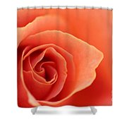Soft Rose Petals Shower Curtain