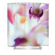 Soft Seduction. Orchids Shower Curtain