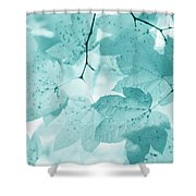 Softness Of Teal Maple Leaves Shower Curtain