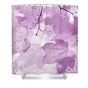Softness Of Violet Maple Leaves Shower Curtain