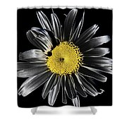 Solarized Daisy Shower Curtain