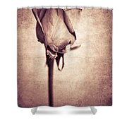 Solitaire Rose 1.0 Shower Curtain
