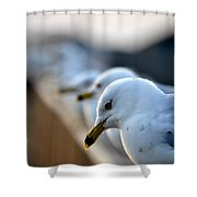 Some Alone Time Shower Curtain