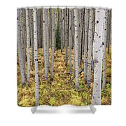 Something Different Shower Curtain
