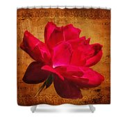 Song Of The Last Rose Shower Curtain