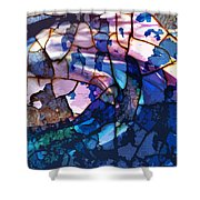 Songs And Colours  Shower Curtain