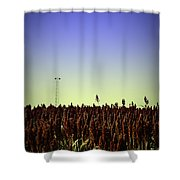 Sorghum Fields Forever Shower Curtain