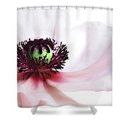 Soul Of Poppy Shower Curtain