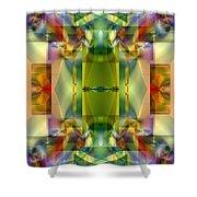 Soul Sanctuary 5 Shower Curtain