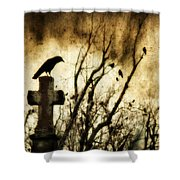 Soulful Crow Shower Curtain