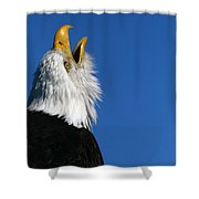 Sounding Off Shower Curtain