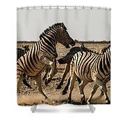 Sour Stripes 3 Shower Curtain