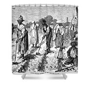 South: Cotton Planting Shower Curtain by Granger
