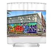 South Haven Storefronts Shower Curtain
