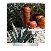 South Western Pottery And Cactus Shower Curtain