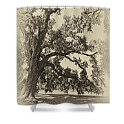 Southern Comfort Sepia Shower Curtain