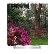 Southern Garden - Fs000148 Shower Curtain