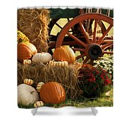 Southern Harvestime Display Shower Curtain