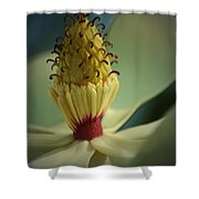 Southern Magnolia Flower Shower Curtain