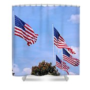 Southern Skies Shower Curtain by Kristin Elmquist