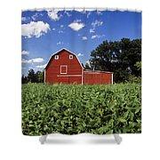 Soybean Field And Red Barn Near Anola Shower Curtain