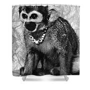 Space Monkey: Baker, 1979 Shower Curtain