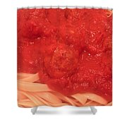 Spaghetti And Meatballs Shower Curtain by Michael Merry